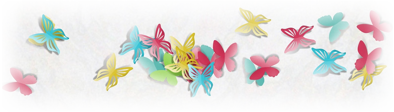 butterfly-banner